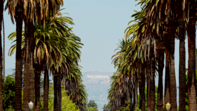 Photo of A Hollywood Walking Tour Perfect for Film, Food, and Alcohol Lovers