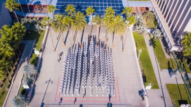 Photo of New LACMA Exhibit Offers a Cynical Take on Office Culture